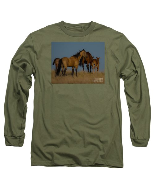 Horses 1 Long Sleeve T-Shirt