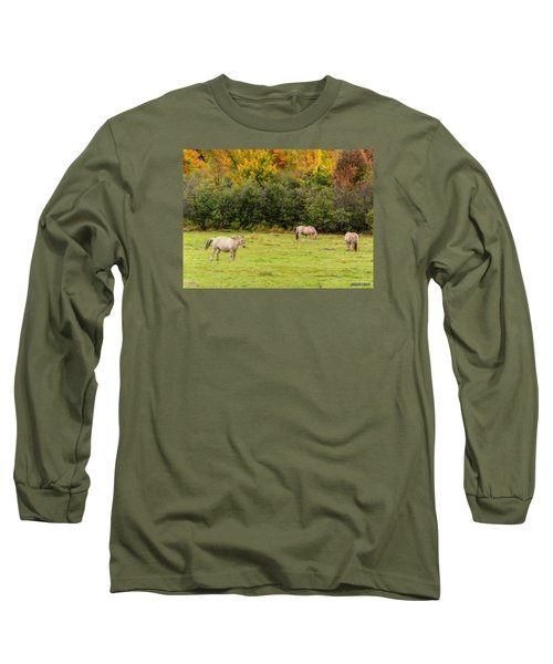 Horses Enjoying A Beautiful Autumn Day Long Sleeve T-Shirt by Ken Morris