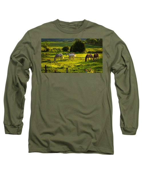 Horses Grazing In Evening Light Long Sleeve T-Shirt