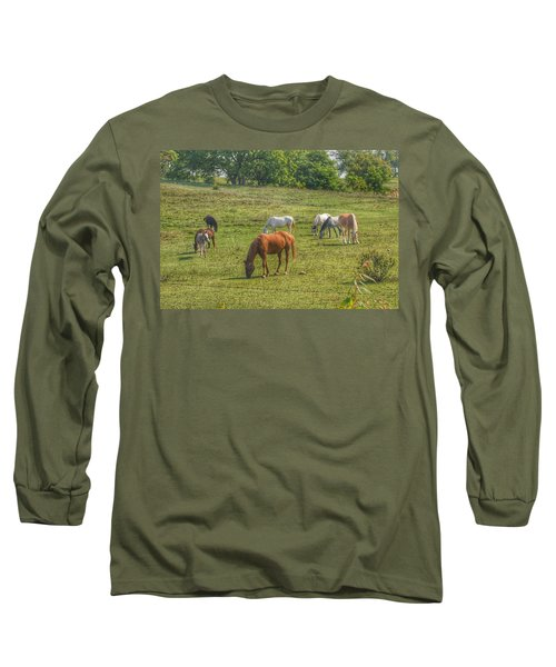 1003 - Horses In A Pasture I Long Sleeve T-Shirt