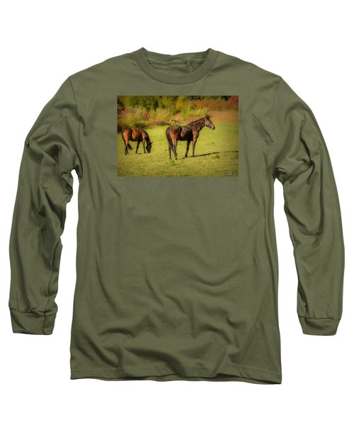 Horses In Mabou Long Sleeve T-Shirt by Ken Morris