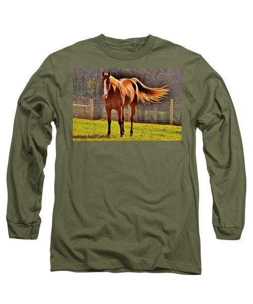 Horse's Tail Long Sleeve T-Shirt