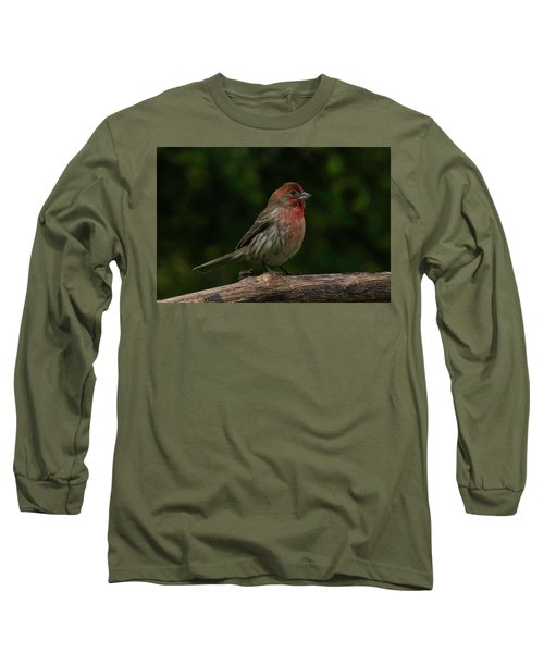 House Finch 2 Long Sleeve T-Shirt
