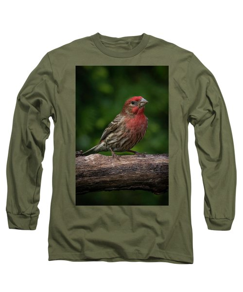 House Finch Long Sleeve T-Shirt by Kenneth Cole