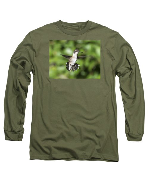 Hovering Hummer Long Sleeve T-Shirt