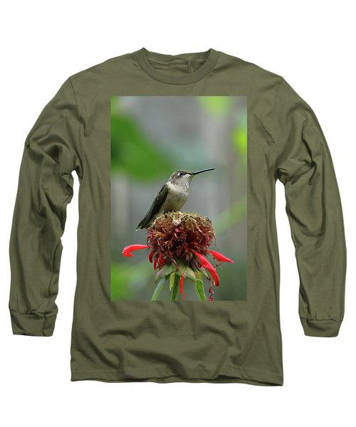 Humming Bird Atop Bee Balm Long Sleeve T-Shirt by David Stasiak