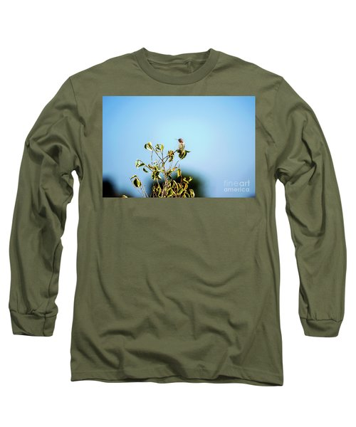 Long Sleeve T-Shirt featuring the photograph Humming Bird On A Branch by Micah May