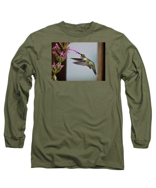 Hummingbird And Agastache Long Sleeve T-Shirt by Kathy Eickenberg