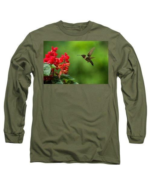 Hummingbird And Scarlet Sage Long Sleeve T-Shirt