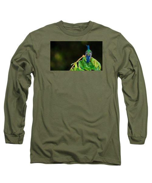 Hummingbird Long Sleeve T-Shirt by Daniel Precht