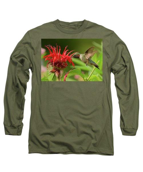 Hummingbird Delight Long Sleeve T-Shirt
