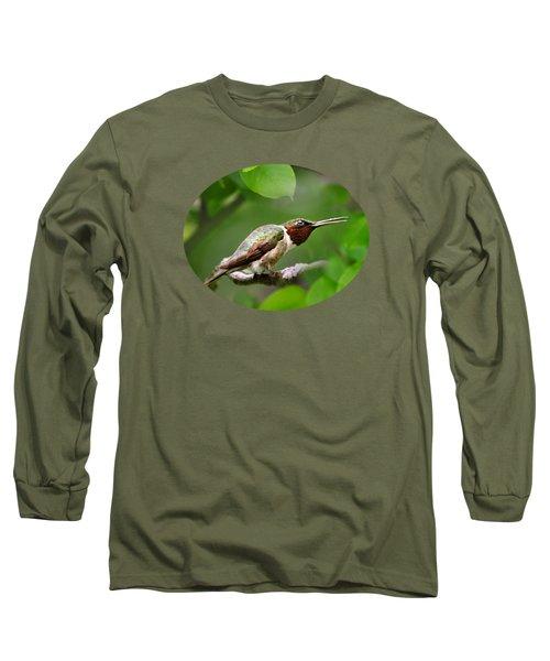 Hummingbird Hiding In Tree Long Sleeve T-Shirt by Christina Rollo