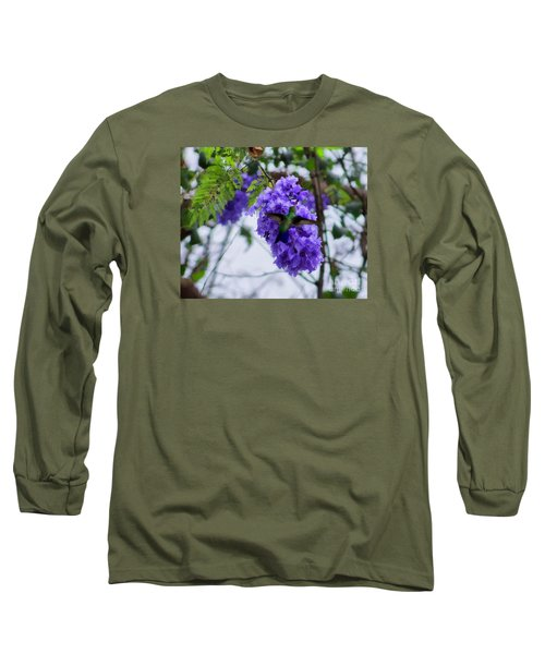 Hummingbird In A Jacaranda Tree Long Sleeve T-Shirt
