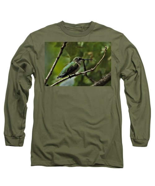 Hummingbird On Branch Long Sleeve T-Shirt