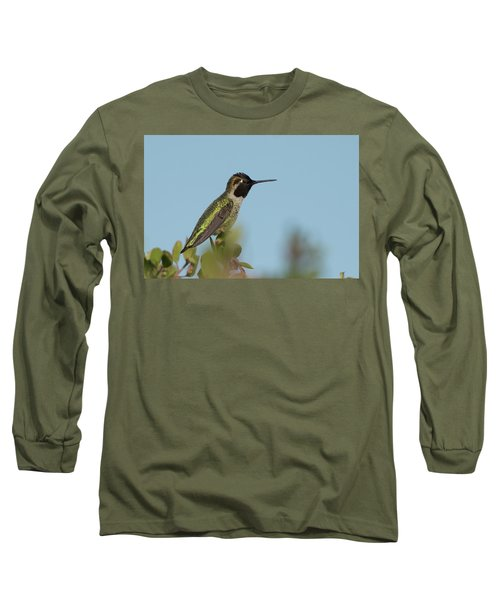 Hummingbird On Watch Long Sleeve T-Shirt