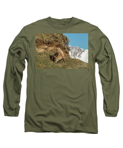 Ibex On The Mountains Long Sleeve T-Shirt