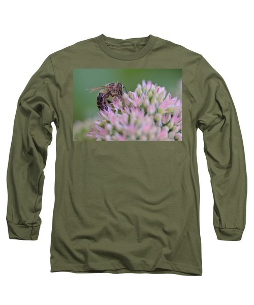 In Search Of Nectar Long Sleeve T-Shirt by Janet Rockburn