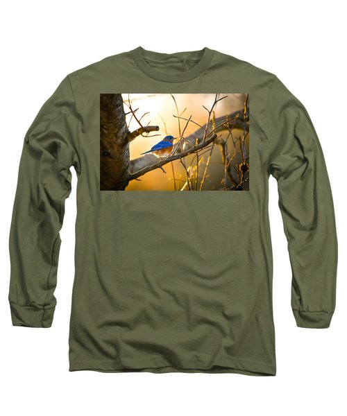 In The Light Long Sleeve T-Shirt by Shelby  Young