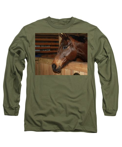 Long Sleeve T-Shirt featuring the painting In The Stall by Roena King