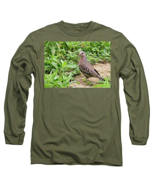 Inca Dove Long Sleeve T-Shirt