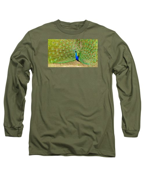 Indian Peacock Long Sleeve T-Shirt by Dan Miller