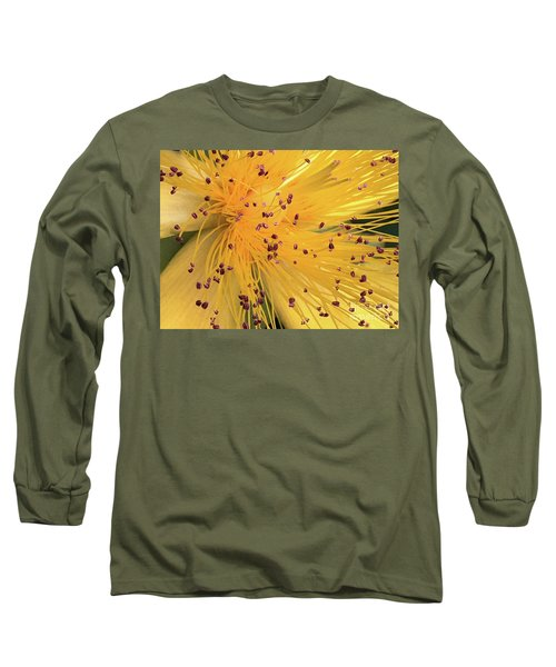 Inside A Flower - Favorite Of The Bees Long Sleeve T-Shirt