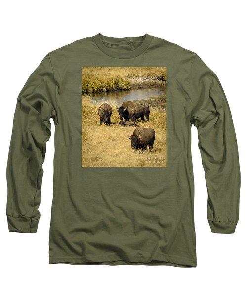 It's A Family Affair Long Sleeve T-Shirt