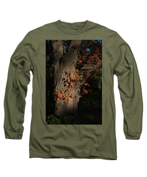 Ivy In The Fall Long Sleeve T-Shirt