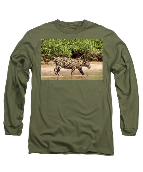 Jaguar Walking On A River Bank Long Sleeve T-Shirt by Aivar Mikko