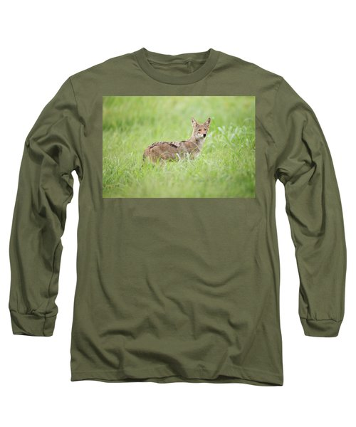 Juvenile Coyote Long Sleeve T-Shirt