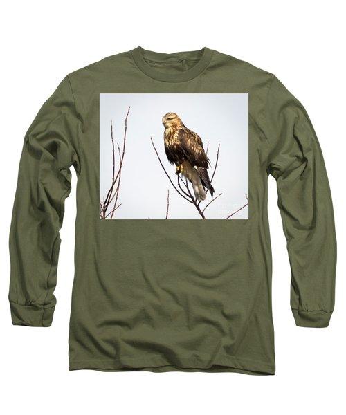 Juvenile Rough-legged Hawk  Long Sleeve T-Shirt by Ricky L Jones