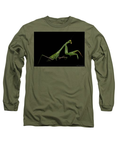 Katydid In Black Long Sleeve T-Shirt