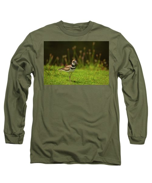 Killdeer Long Sleeve T-Shirt by Karol Livote