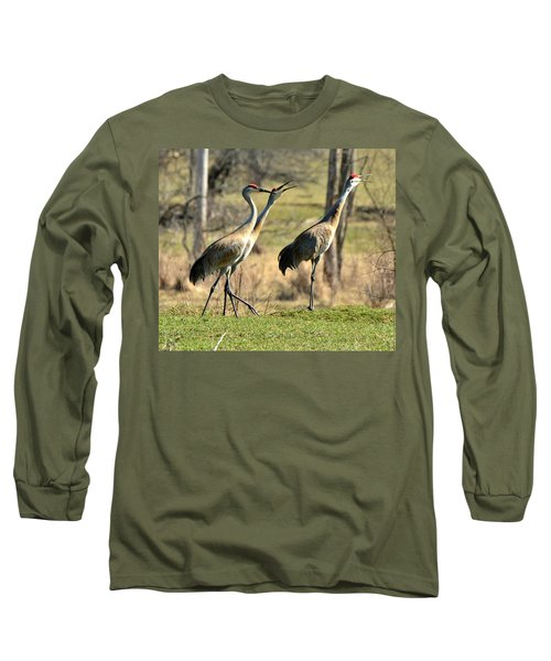 Late Winter Song Long Sleeve T-Shirt