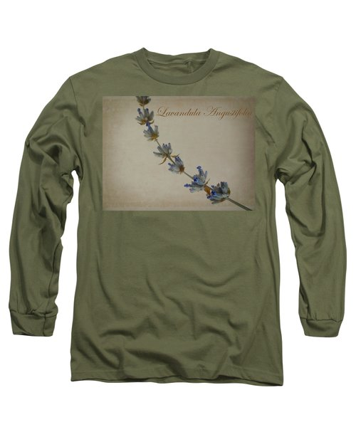 Lavandula Angustifolia Long Sleeve T-Shirt by Julia Wilcox