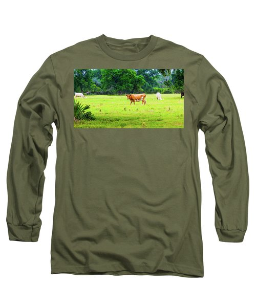 Lazy Afternoon In The Life Of A Cow Long Sleeve T-Shirt