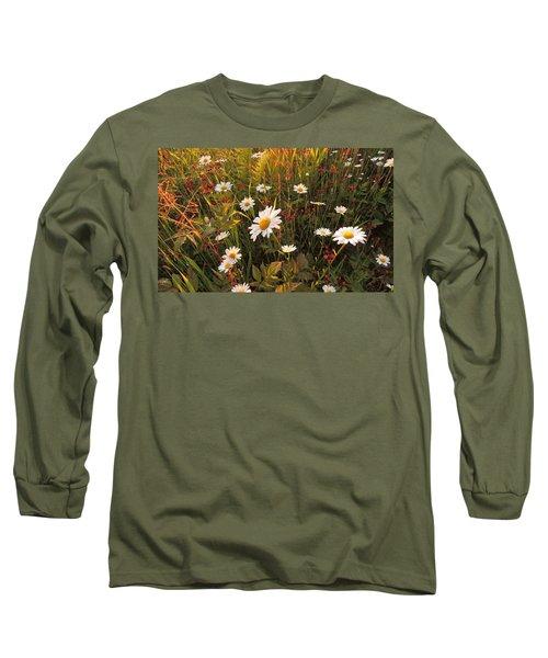Lazy Days Daisies Long Sleeve T-Shirt by Karen Horn