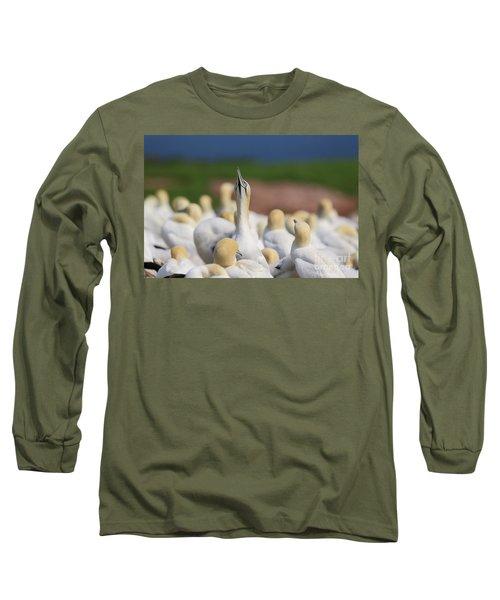 Le Fou. Long Sleeve T-Shirt