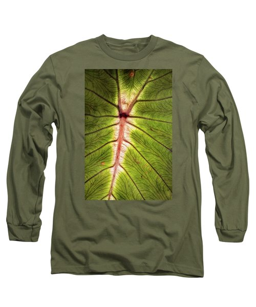 Leaf With Veins Long Sleeve T-Shirt