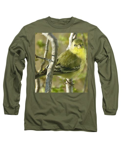Lesser Goldfinch 1 Long Sleeve T-Shirt