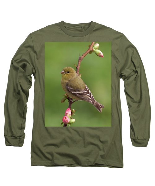 Long Sleeve T-Shirt featuring the photograph Lesser Goldfinch by Doug Herr