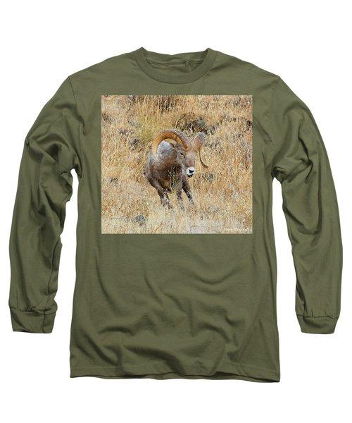 Let's Go IIi Long Sleeve T-Shirt