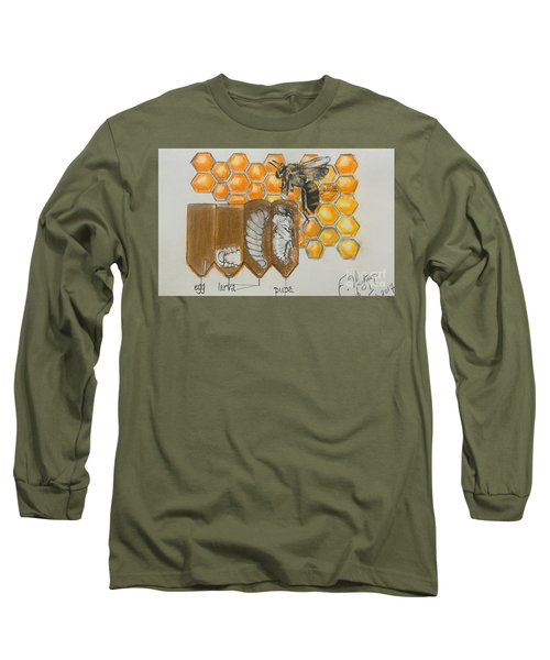 Life Cycle Of A Bee  Long Sleeve T-Shirt