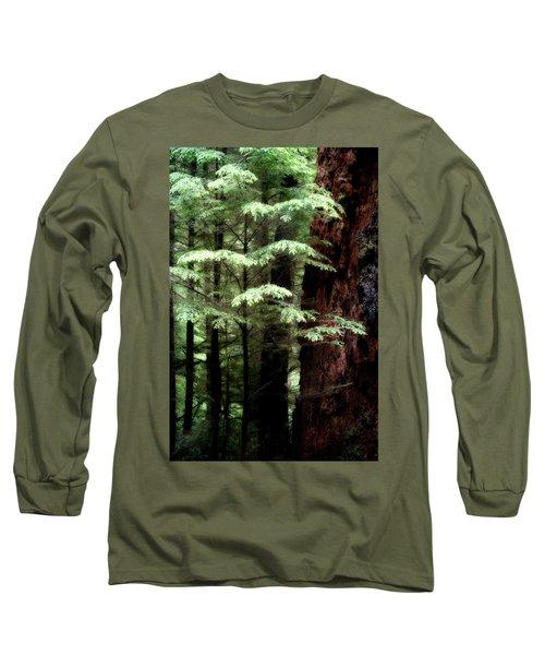 Light On Trees Long Sleeve T-Shirt