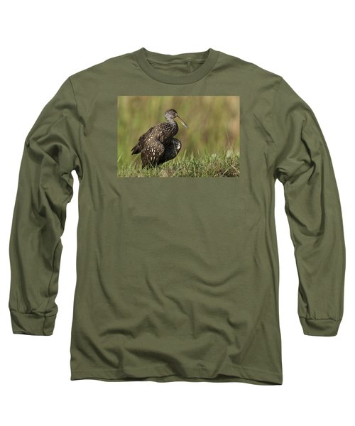 Limpkin Stretching In The Grass Long Sleeve T-Shirt