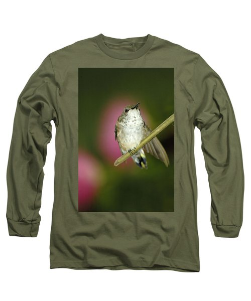 Little Humming Bird Long Sleeve T-Shirt