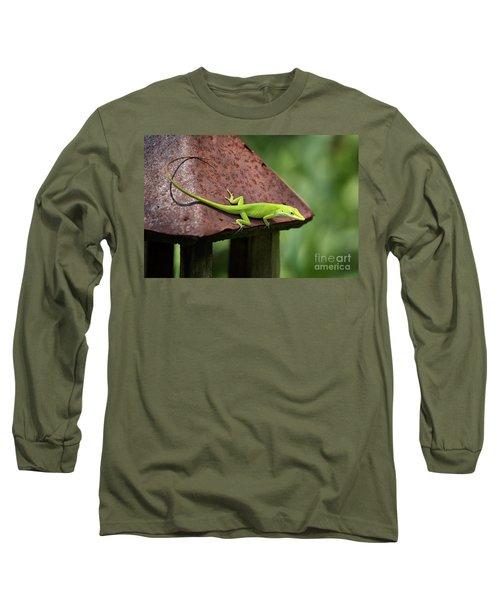 Lizard On Lantern Long Sleeve T-Shirt