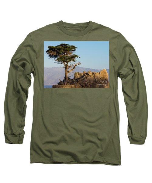 Lone Cypress Tree  Long Sleeve T-Shirt