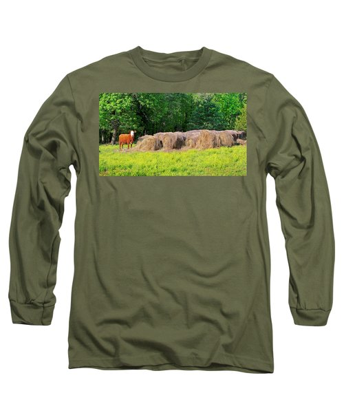 Lone Cow Guard, Smith Mountain Lake Long Sleeve T-Shirt