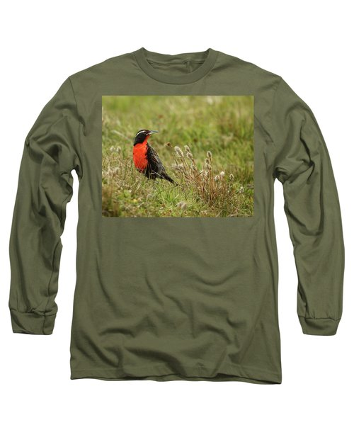 Long-tailed Meadowlark Long Sleeve T-Shirt by Bruce J Robinson
